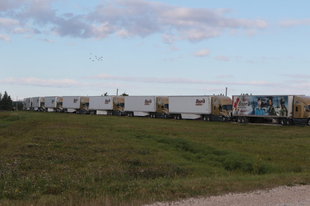 Bison Transport Trucks at Manitoba's World's Largest Truck Convoy