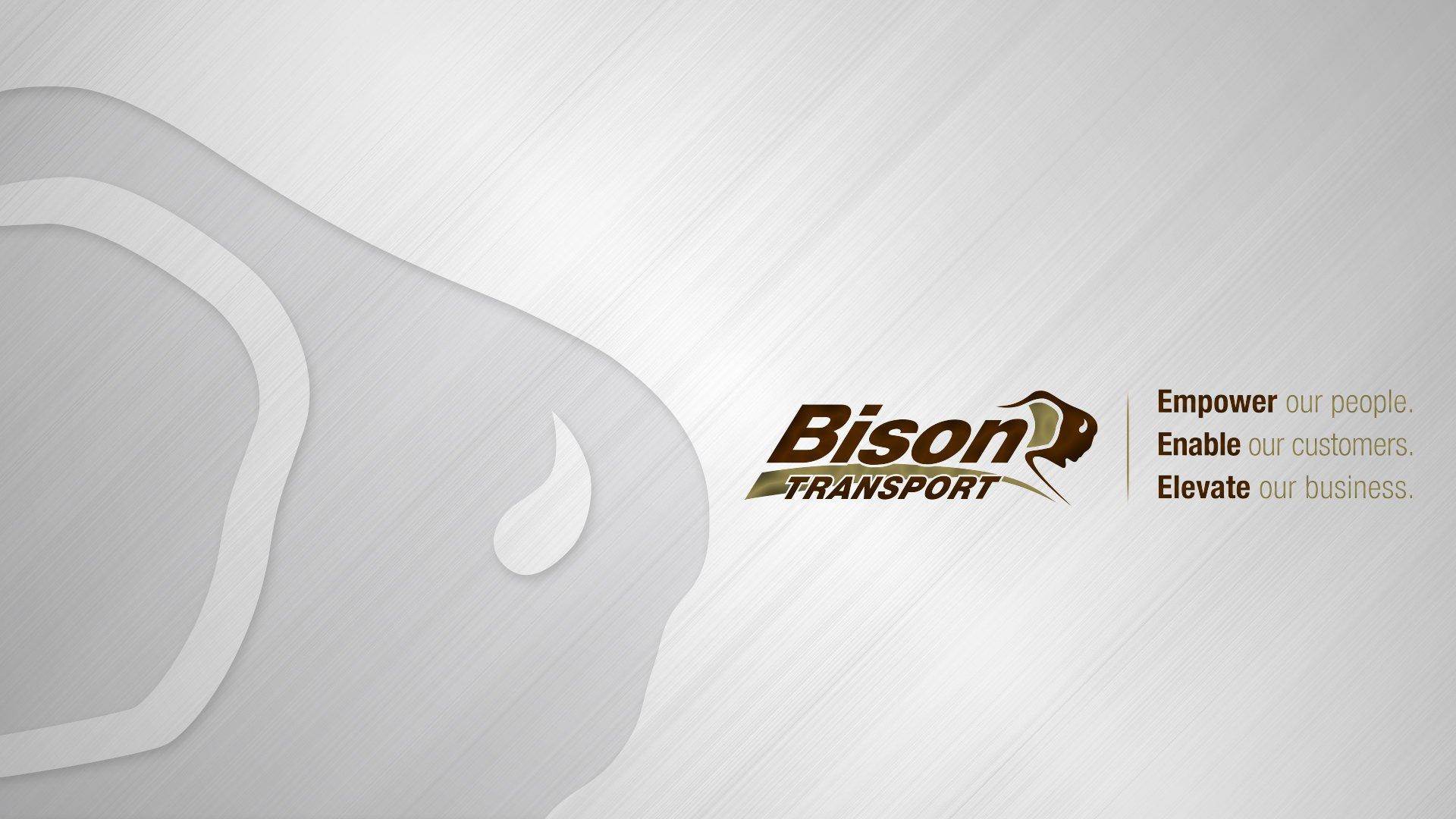 bison_background_17